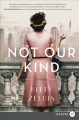 Not our kind : a novel