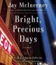 Bright, precious days : [a novel]