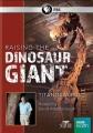 Raising the dinosaur giant