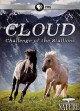 Cloud : challenge of the stallions