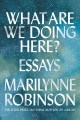 What are we doing here? : essays
