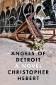 Angels of Detroit : a novel