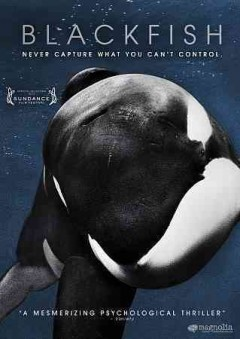 dvd blackfish cover art