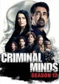 Criminal minds. The twelfth season.