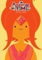 Adventure time [videorecordings (DVD)] : the final seasons