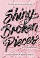Shiny broken pieces : a Tiny pretty things novel