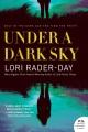 Under a dark sky : a novel