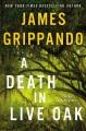 A death in Live Oak : a Jack Swyteck novel