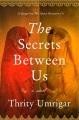 The secrets between us : a novel