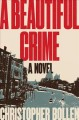 A beautiful crime : a novel