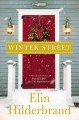 Winter street : a novel