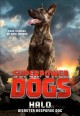 Superpower dogs : Halo : disaster response dog
