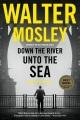 Down the river unto the sea : a novel