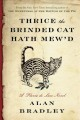 Thrice the brinded cat hath mew