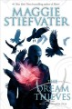 Book cover of The dream thieves