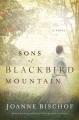 Sons of Blackbird Mountain : a novel