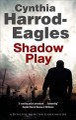 Shadow play : a Bill Slider mystery
