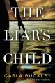The liar's child : a novel
