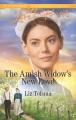 The Amish widow's new love