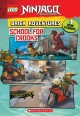 School for crooks : brick adventures : 3 new action-packed, illustrated stories!
