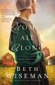 Home all along : an Amish secrets novel