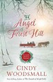 The angel of Forest Hill : an Amish Christmas romance