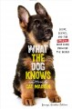What the dog knows : [scent, science, and the amazing ways dogs perceive the world]