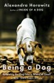Being a dog : following the dog into a world of smell