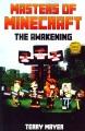Masters of minecraft : the awakening