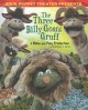 Sock Puppet Theater presents The three billy goats Gruff : a make and play production
