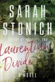 Laurentian divide : a novel