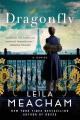 Dragonfly : a novel