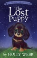 Pet Rescue Adventures : The Lost Puppy.