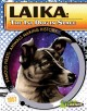 Laika : the 1st dog in space