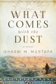 What comes with the dust : a novel