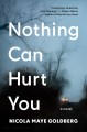 NOTHING CAN HURT YOU : A NOVEL