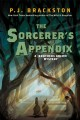 The sorceror