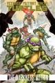 Teenage Mutant Ninja Turtles. Volume 2, The darkness within