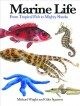 Marine life : from tropical fish to mighty sharks