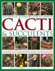 The practical illustrated guide to growing cacti & succulents : the definitive gardening reference on identification, care and cultivation, with a directory of 400 varieties and 700 photographs