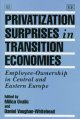 Privatization surprises in transition economies : employee-ownership in Central and Eastern Europe