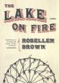 The lake on fire : a novel