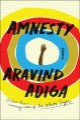 Amnesty : a novel