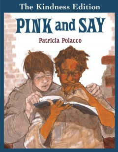 Pink and Say cover image