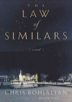 The law of similars cover image