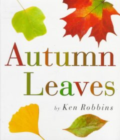 Autumn leaves cover image