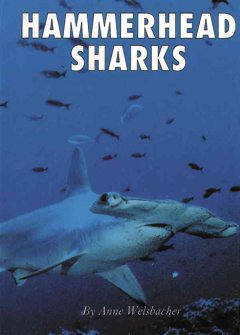 Hammerhead sharks cover image