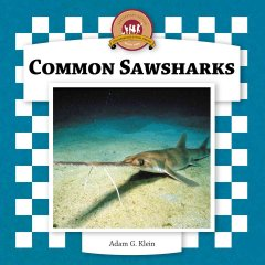 Common sawsharks cover image