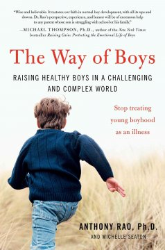 The way of boys : raising healthy boys in a challenging and complex world cover image