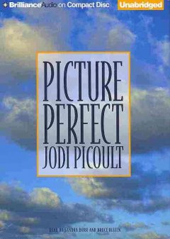 Picture perfect cover image